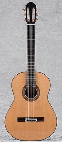 Daniele Chiesa Guitar